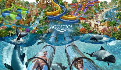 Aquatica_orlando_beach_waterpark_american_vacation_living-397x230 - disney
