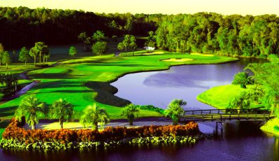 Disney-Palm-Golf-Club-397x230 - disney