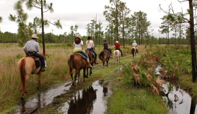 Horse_Back_Riding_orlando_attractions_american_vacation_living-397x230 - disney