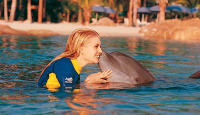 Swim_with_Dolphins_orlando_attractions_american_vacation_living-397x230 - disney